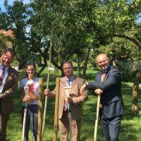 boom-planten-bij-het-eerste-jubileum-StreekFonds-Krimpenerwaard-2017